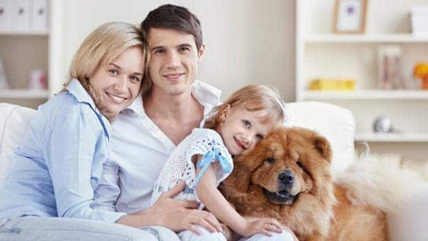 Wills & Trusts dog-young-family Direct Wills Surrey